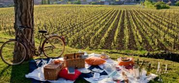 Journées Pique-nique des vignerons indépendants 20 et 21 mai 2018